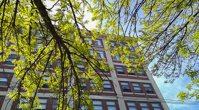 Apartment building, trees in spring