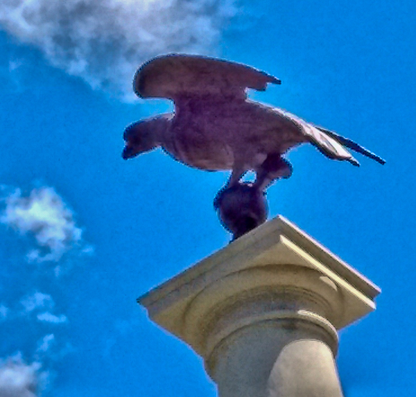 Eagle at State House Entrance